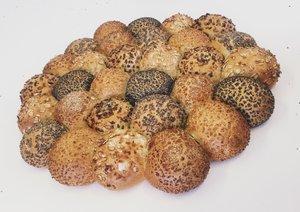 Brytbröd blandade fröer